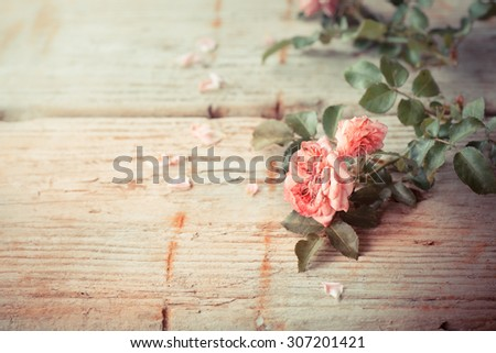 Pink roses on wooden table background, Romantic floral theme