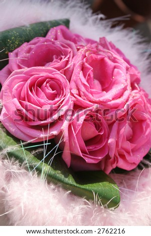 Pink roses surrounded by white - stock photo