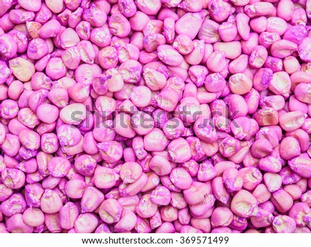 Pink seed corn bean background - stock photo
