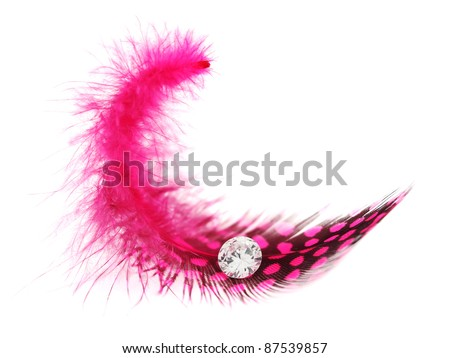 Pink spotted feather with diamond gem on white background - stock photo