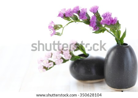 Pink statice flower black vase on stock photo royalty free pink statice flower in black vase on wooden white background pink limonium sinuatum statice salem mightylinksfo Images