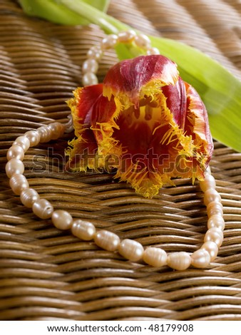 pink tulip with beads on a wickerworked background - stock photo