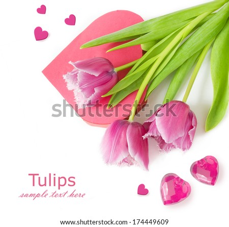 Pink tulips and heart box shape isolated on white background with sample text. Valentine Day concept, Love concept., Valentine's day concept. Wedding concept - stock photo