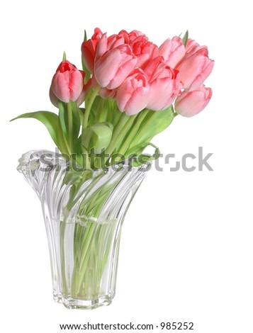 Pink tulips in crystal vase isolated on white - stock photo