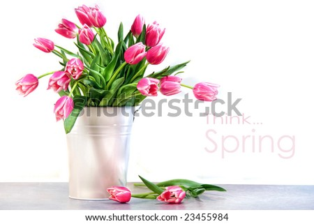Pink tulips in white metal container against kitchen tiles - stock photo