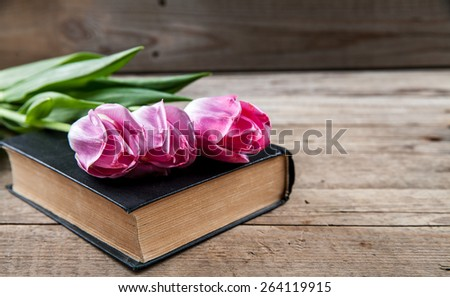 pink tulips on a pile of old books. Flowers - stock photo