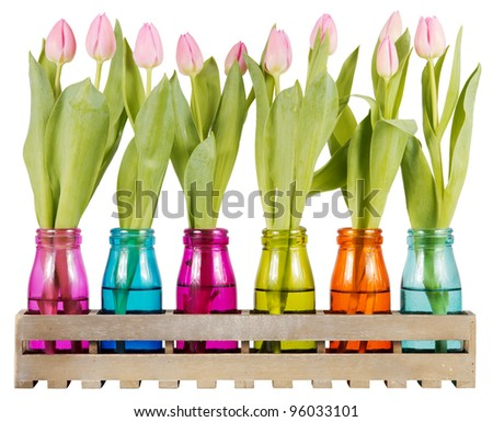 Pink tulips with closed blossoms in colorful vases over a white background - stock photo