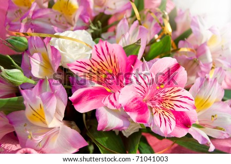 Pink wedding flowers bouquet on outdoors - stock photo