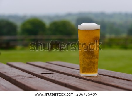 pint of lager beer on country pub beer garden table - stock photo