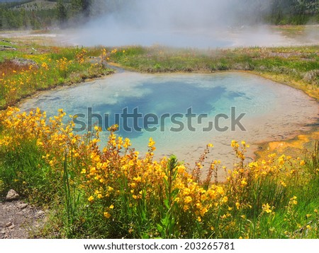 pinto spring and gem pool  in the cascade group of the upper geyser basin, yellowstone national park, wyoming - stock photo