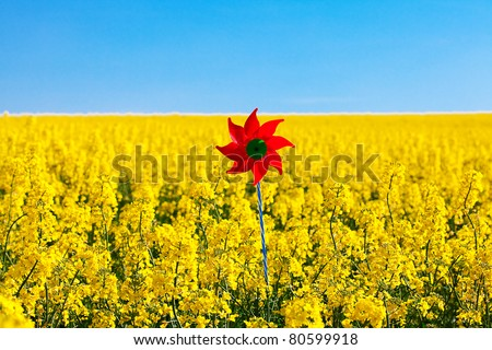 pinwheel  in a field of yellow rape against the blue sky - stock photo