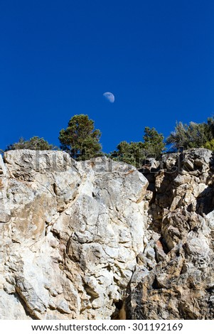 Pinyon pines, Gray Cliffs, and the moon in Great Basin National Park - stock photo