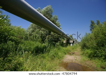 Pipeline, running through the forest - stock photo