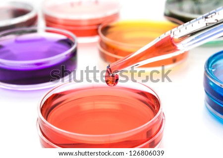 Pipette with drop of color liquid and petri dishes - stock photo