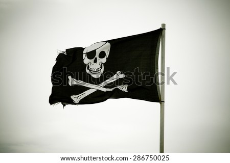 Pirate flag - stock photo