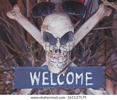 "Pirate symbol, skull and bones, the word ""welcome"". Image with retro toning - stock photo"