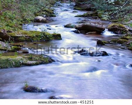 Pisgah Mountain Stream - stock photo