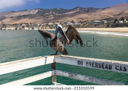 Pismo Beach, Big Sur, California, USA - stock photo