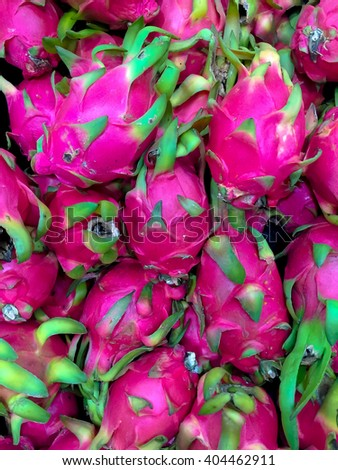 "Pitaya background :the fruit of several cactus species. ""Pitaya"" usually refers to fruit of the genus Stenocereus, while ""pitahaya"" or ""dragon fruit"" refers to fruit of the genus Hylocereus."