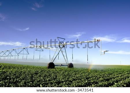 Pivot  irrigating a field - stock photo