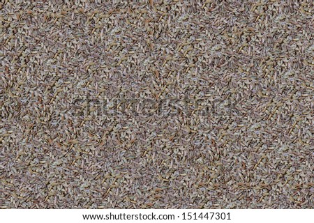 Placer grain cumin spice - background texture collage - stock photo