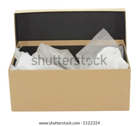Plain brown box - stock photo