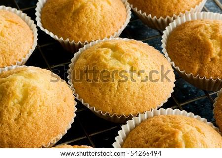Plain homemade baked buns on a baking tray - stock photo