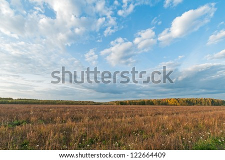 Plain landscape with sunny meadow against forest and blue sky background - stock photo