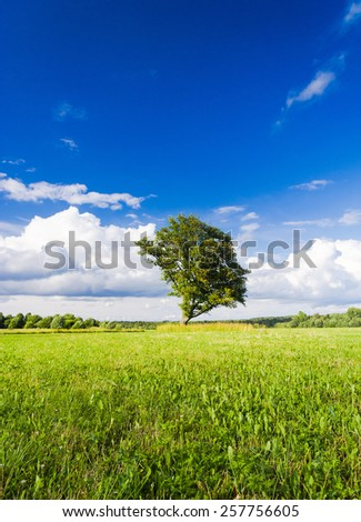 Plain Nature Scenic View  - stock photo