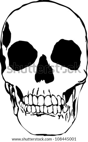 Plain skull - stock photo