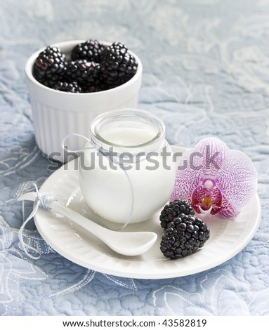Plain yogurt and blackberries in a ramekin - stock photo