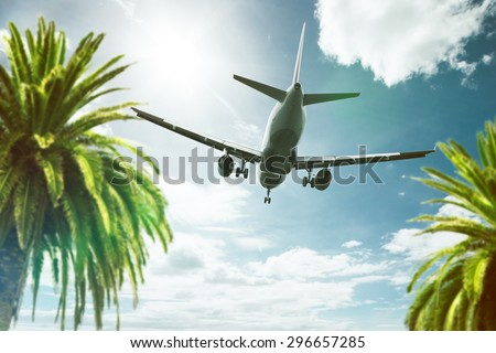 Plane above Palm Trees - stock photo