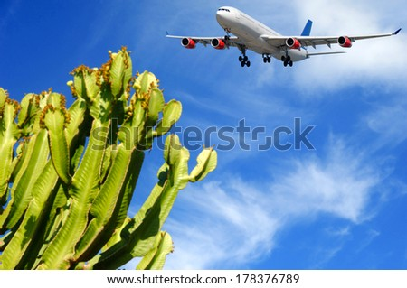 Plane is about to land at a tropical destination. The plant is in blure the plane is in focus. - stock photo