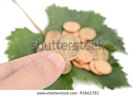 Plane tree leaf and coins - stock photo