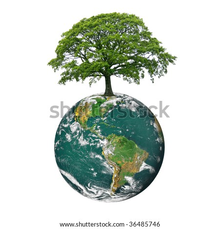 Planet earth featuring the north and south american continents, with an oak tree in full leaf in summer at the northerly position on the globe, over white background. - stock photo