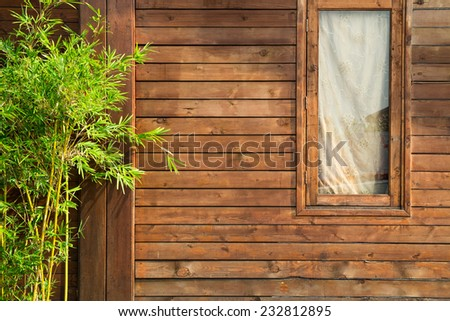 Planks wall with window and plant - stock photo