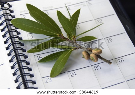 Planning Ahead Baby acorns on a calender indicating fall is coming - stock photo