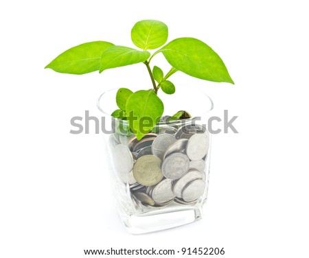 Plant and a cup of Thai coins - stock photo