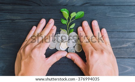 plant and coins by hands top view, investment and business concepts - stock photo