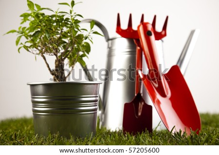 Plant and garden tools - stock photo