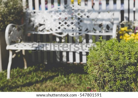 plant and white metal chair on lawn yard in park