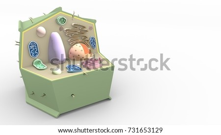 stock photo plant cell biological science d render 731653129