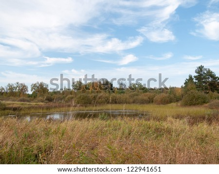 Plant-filled lake before thicket under blue sky landscape panorama. Nizhegorodsky region, Russia.
