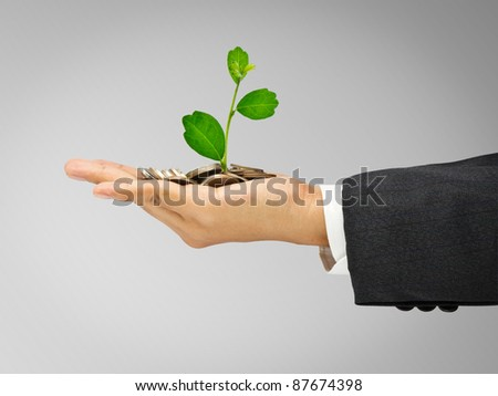 Plant growing from coins in hand