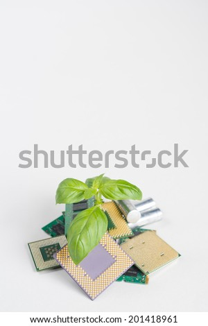 Plant growing from dumped computer processors. Detailed shot with great colors. Computer recycling concept. - stock photo