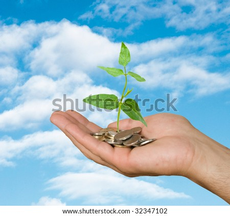 Plant growing from pile of coins in hand - stock photo