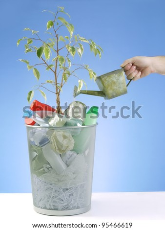 Plant growing in trash bin full of domestic garbage being watered with water can over blue background