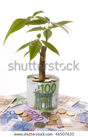 Plant growing on a bank note flowerpot symbolizing financial growth - stock photo