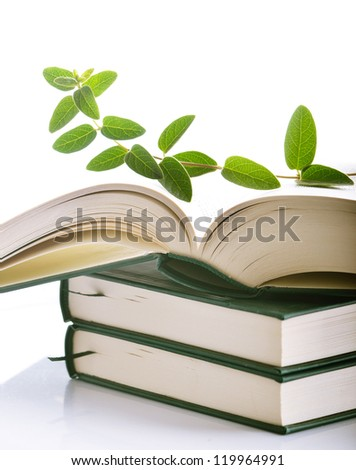 Plant growing out of open book - stock photo
