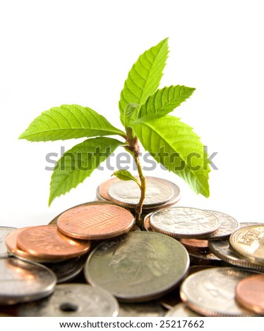 Plant grows in between coins. Concept of investment, generating wealth. - stock photo